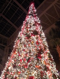 Christmas Tree at the Opryland Hotel 111215